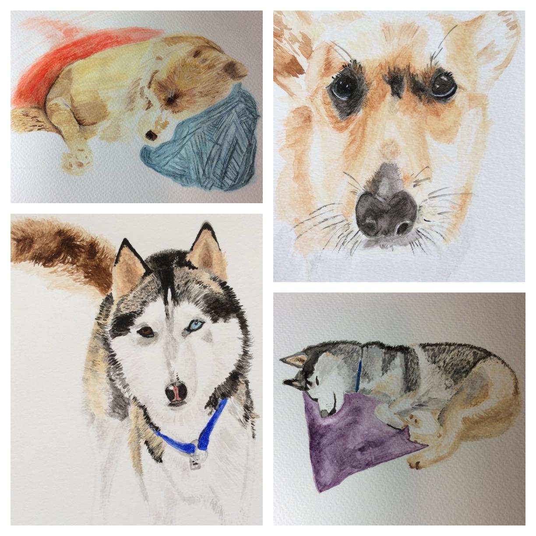 GUEST DOODLEWASH: Pet Portraits
