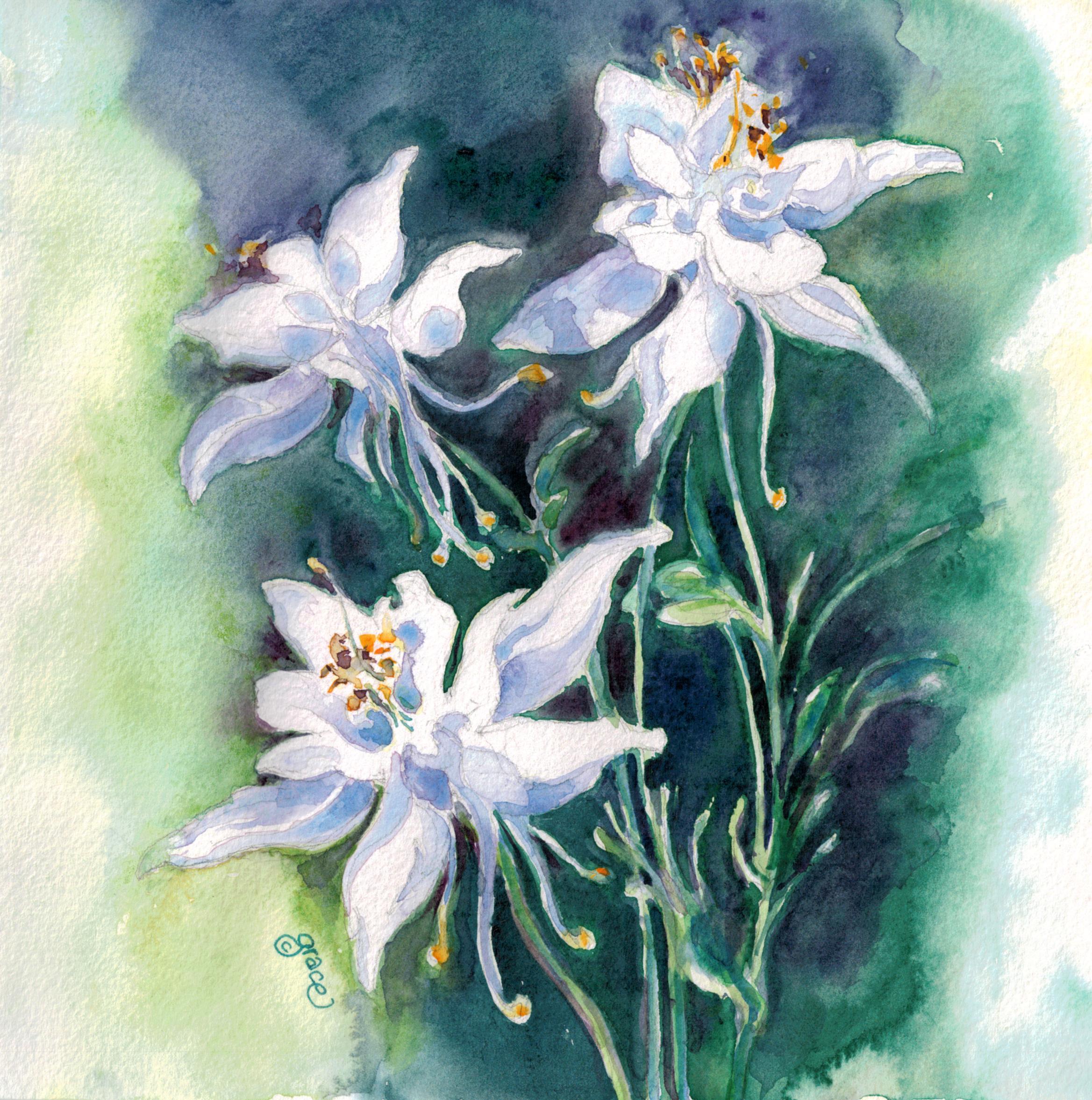 GUEST DOODLEWASH: WIldflowers