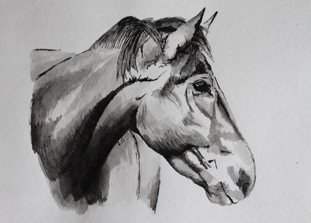 Inked Horse by Jenna Phipps