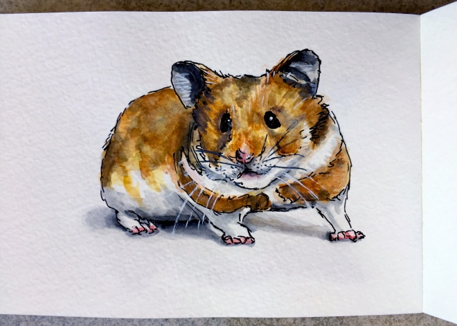 Sparky the Hamster by Charlie O'Shields