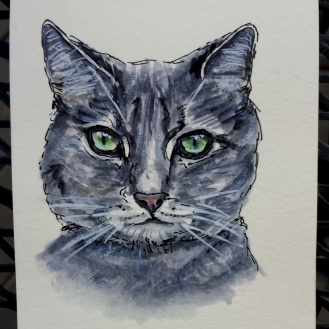 Tabby Cat by Charlie O'Shields