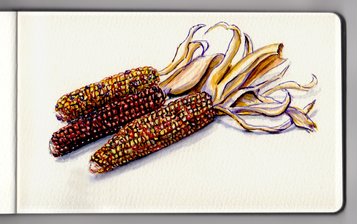 Maize Day by Charlie O'Shields