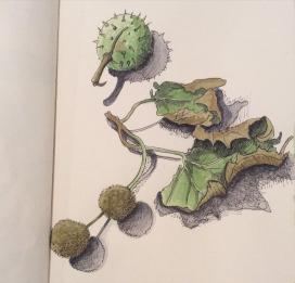 Doodlewash by René Onclin