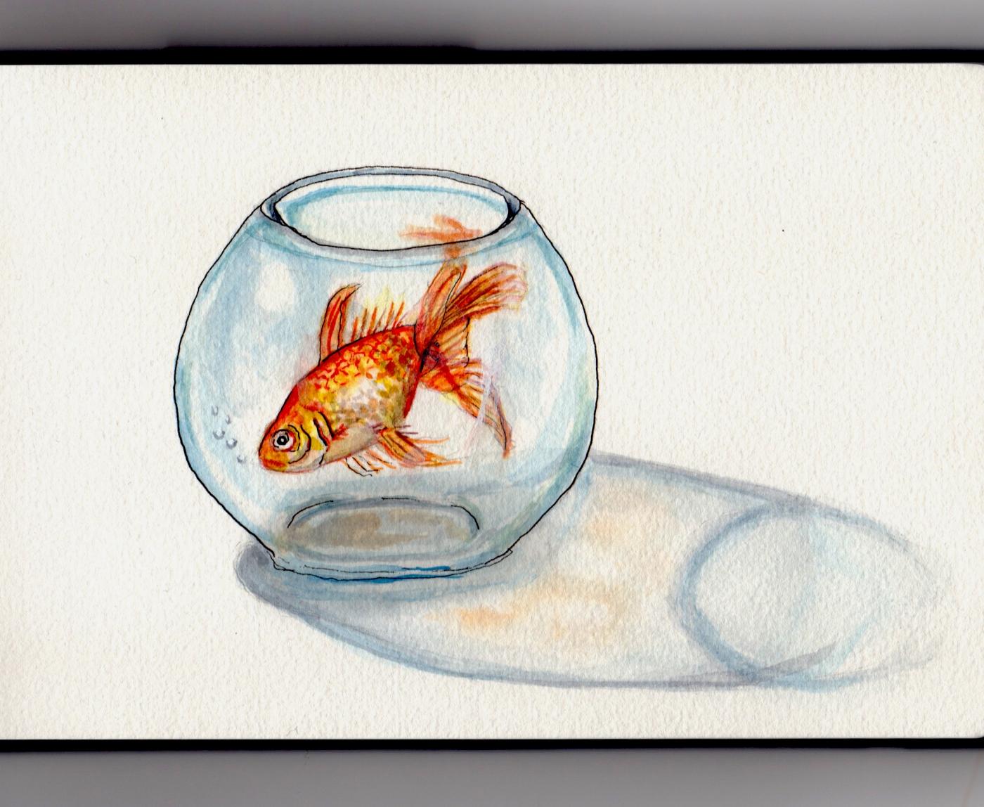 Goldfish In A Bowl - Doodlewash