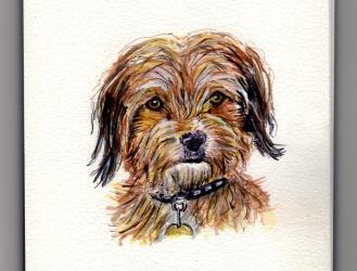Benji Doodlewash by Charlie O'Shields