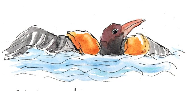Doodlewash by Kathrin Werner