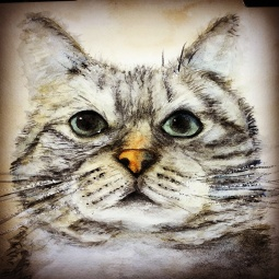 Doodlewash by Pat Saez - watercolor sketch and painting of cat portrait - cat's face close up