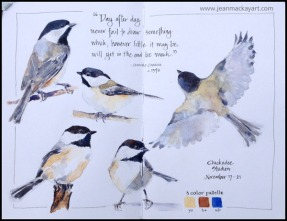 Doodlewashes by Jean Mackay - watercolor sketches of chickadee birds with a limited palette
