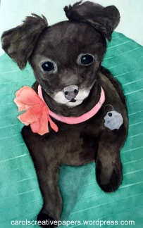 Doodlewash by Carol Hartmann - Watercolor of little black dog Winji