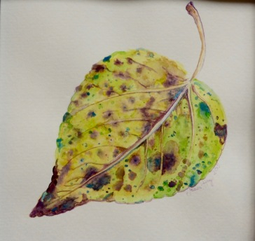 Doodlewash of Yellow Leaf in Watercolor by Jessica Hay