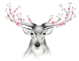 Doodlewash of deer antlers in watercolor with flowers by Mette Laustsen