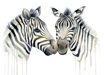 Doodlewash of two zebras touching noses in watercolor by Mette Laustsen