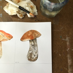 Mushroom watercolor painting - Doodlewash by Jen Fabish