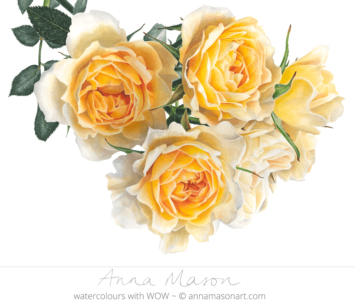 Doodlewash - Watercolor painting by Anna Mason of yellow flowers