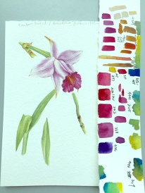 Doodlewash and watercolor painting by Esther Geh of flower and color tests