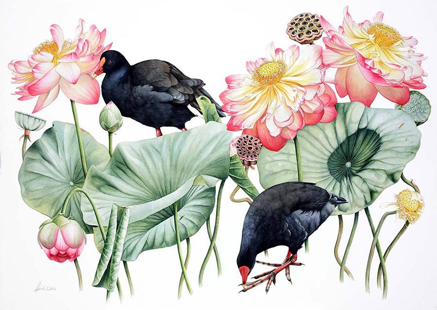 Doodlewash - watercolor painting illustration by Heidi Willis of Loutus Natural history botanical illustrator