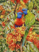 Doodlewash - watercolor painting illustration by Heidi Willis of rainbow lorikeets in Black Bean tree Waterhouse Natural Science Art Prize Finalist