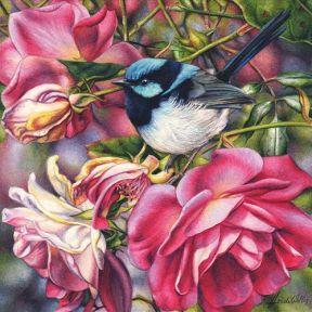 Waterhouse Natural Science Art Prize_Finalist