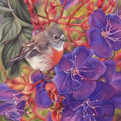 Doodlewash - watercolor painting illustration by Heidi Willis of Scarlet Robin
