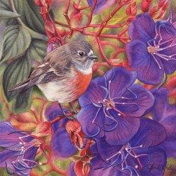 Doodlewash - watercolor painting illustration by Heidi Willis of Scarlet Robin