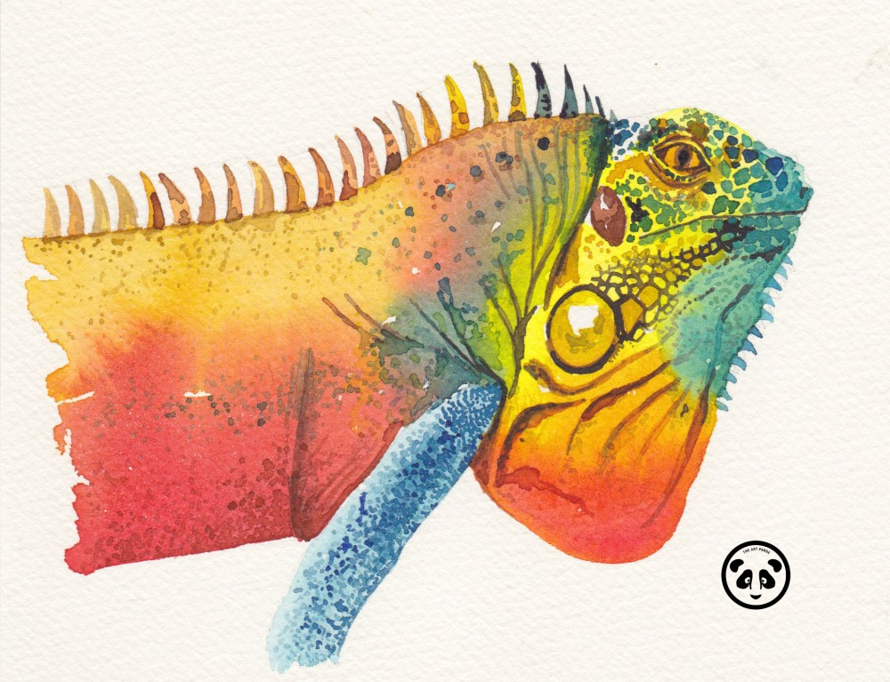 Doodlewash and watercolor sketch by Jeffrell Soliveres The Art Panda of iguana