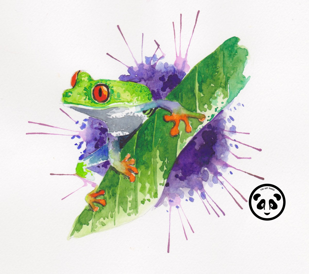 Doodlewash and watercolor sketch by Jeffrell Soliveres The Art Panda of frog with red eyes