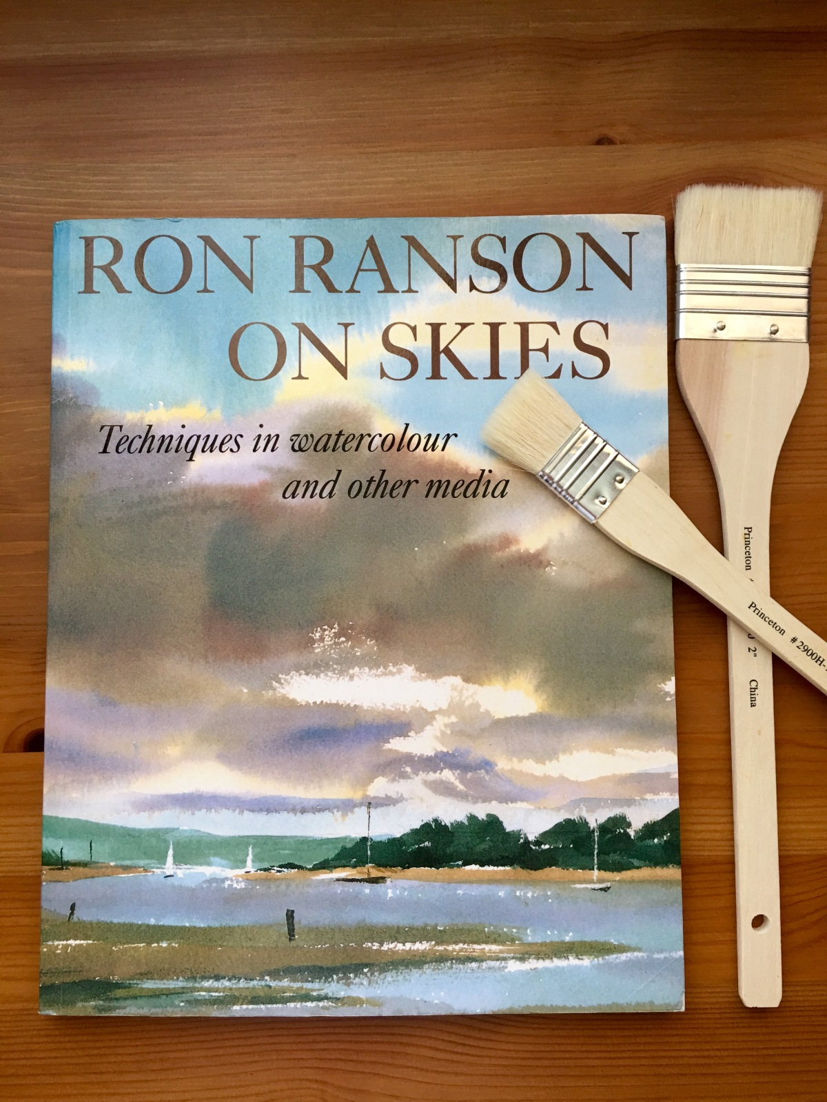 Ron Ranson on skies watercolor book