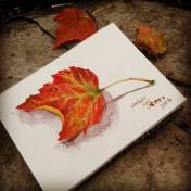 #Doodlewash - Watercolor by Lindsay Weirich of autumn leaf #WorldWatercolorGroup