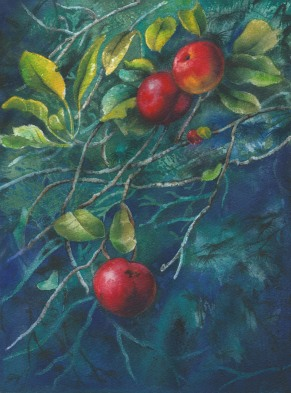 Doodlewash - Watercolor by Bill Jackson of Apple Gems