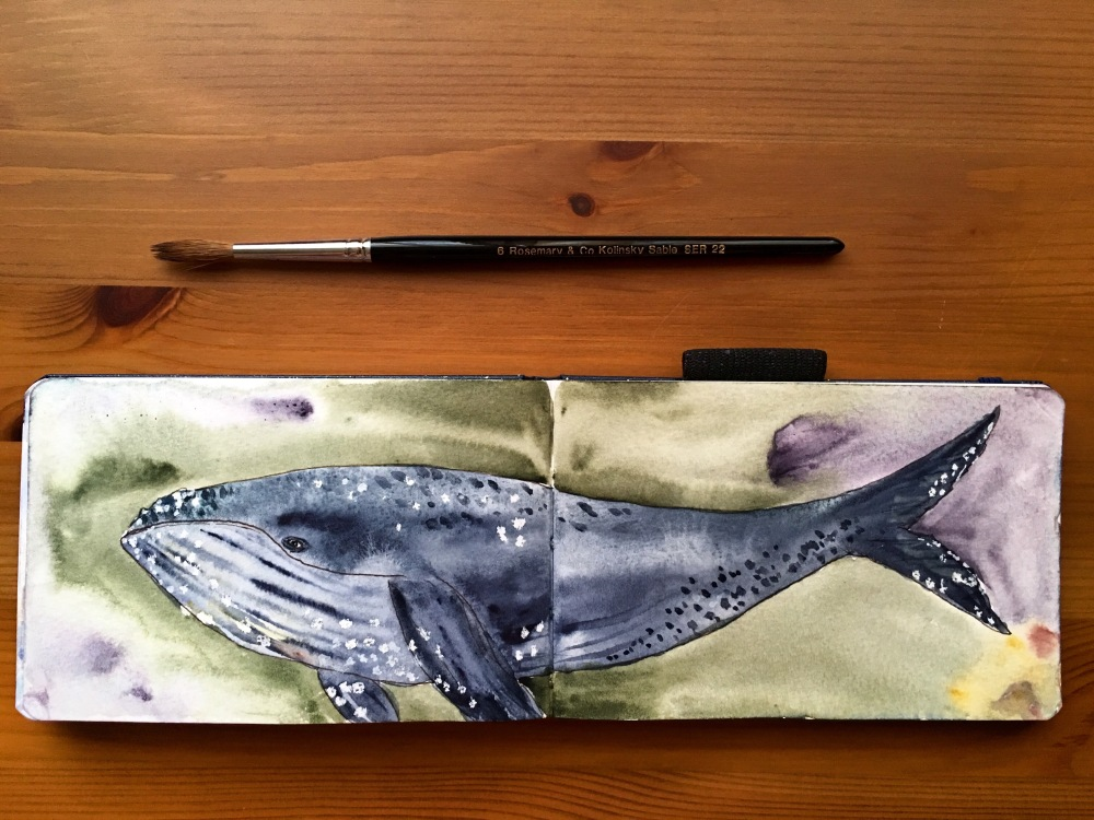 Barnacle the Whale painting my jessica seacrest in a pentalic aqua using daniel smith watercolors