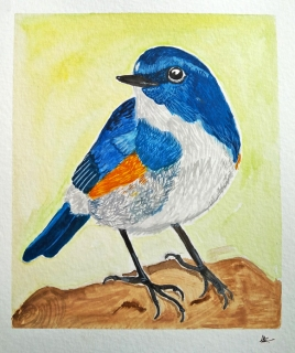 Doodlewash - Watercolor painting by Athira Gopal of bluebird