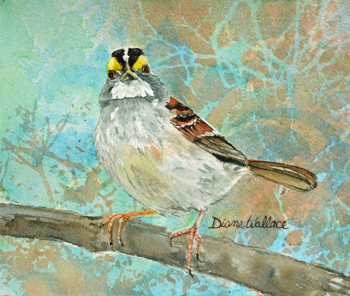 Doodlewash - Watercolor painting by Diane Wallace of bird on branch