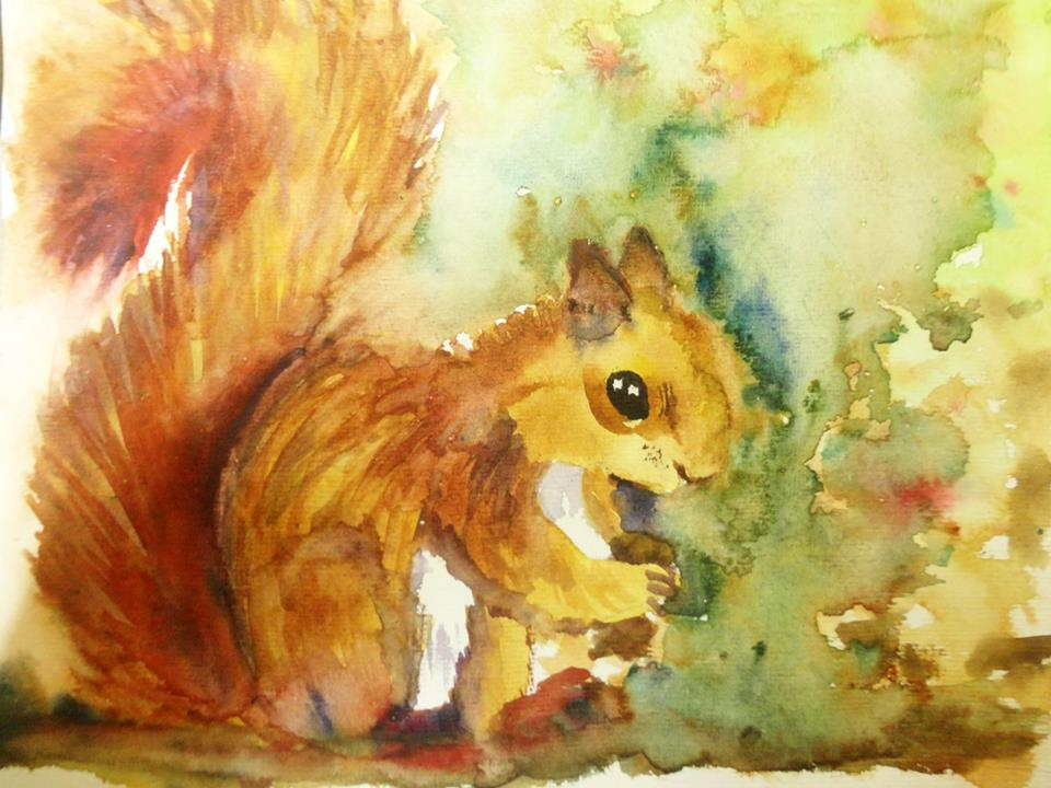 Doodlewash - Watercolor by Charu Jain of squirrel
