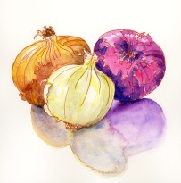 Doodlewash and watercolor sketch by Meliessa Garrison Elliott of Onions