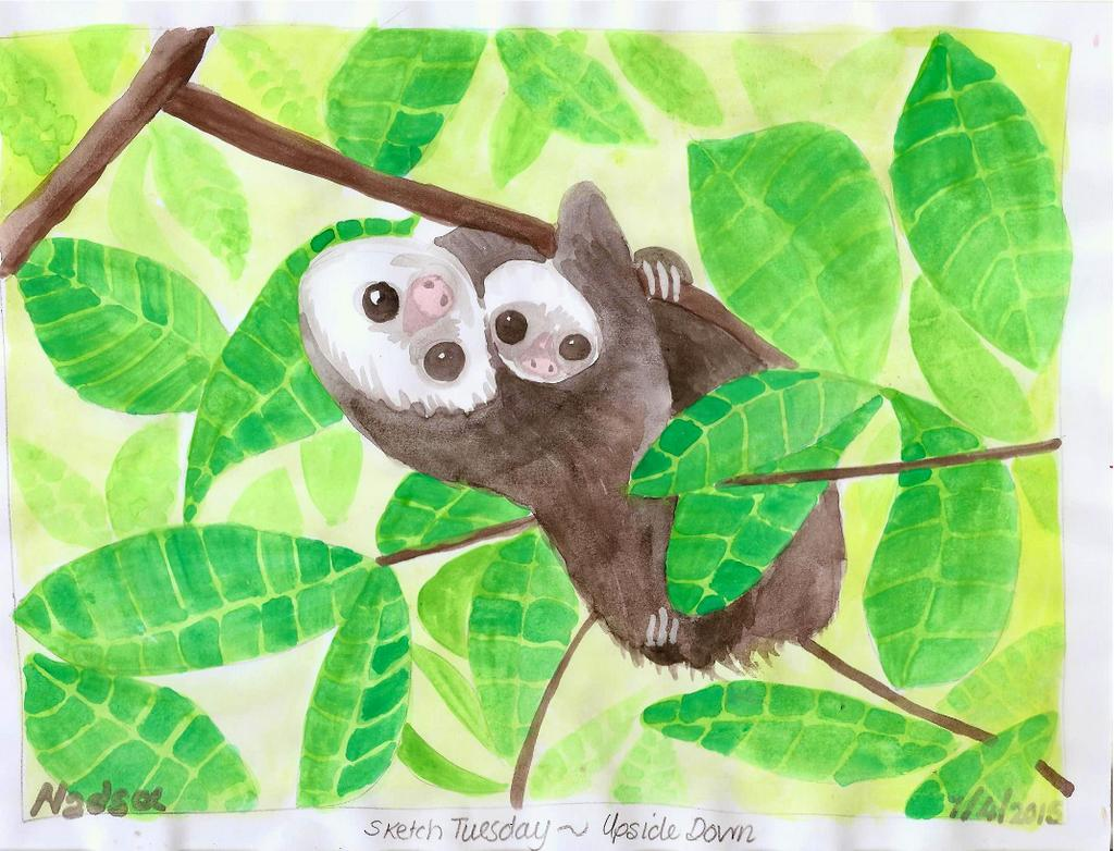 #Doodlewash - Watercolor by Nadene Esterhuizen of Sloth and baby #WorldWatercolorGroup