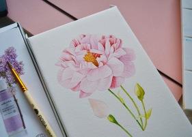 #WorldWatercolorGroup - Watercolor by Kateryna Savchenko of flower - #doodlewash