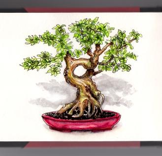 Day 24 - #WorldWatercolorGroup Bonsai Tree Potted Plant
