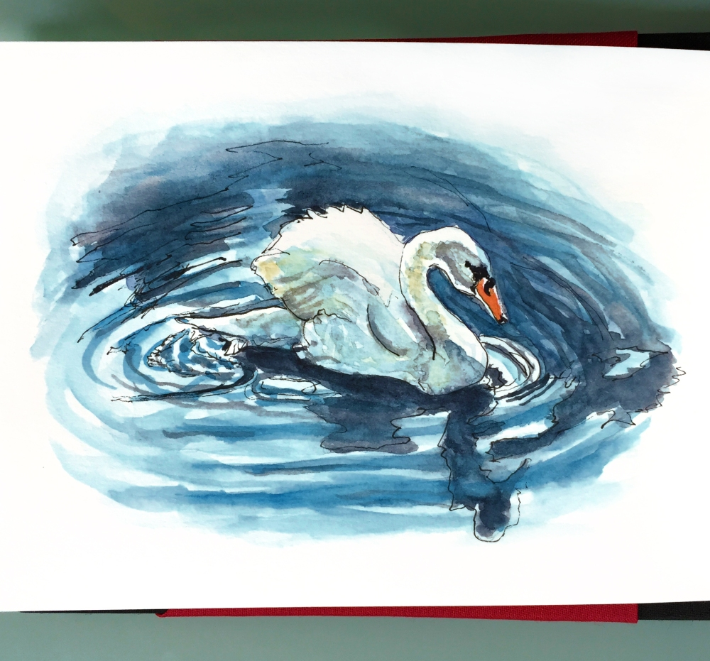 Day 8 - #WorldWatercolorGroup Swan in water with shadow watercolor painting
