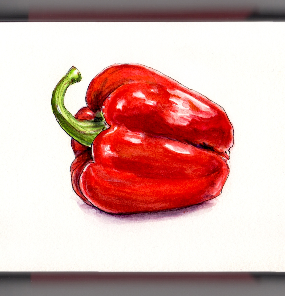 Day 12 - #WorldWatercolorGroup National Pepper Month Red Bell Pepper on White background watercolor painting