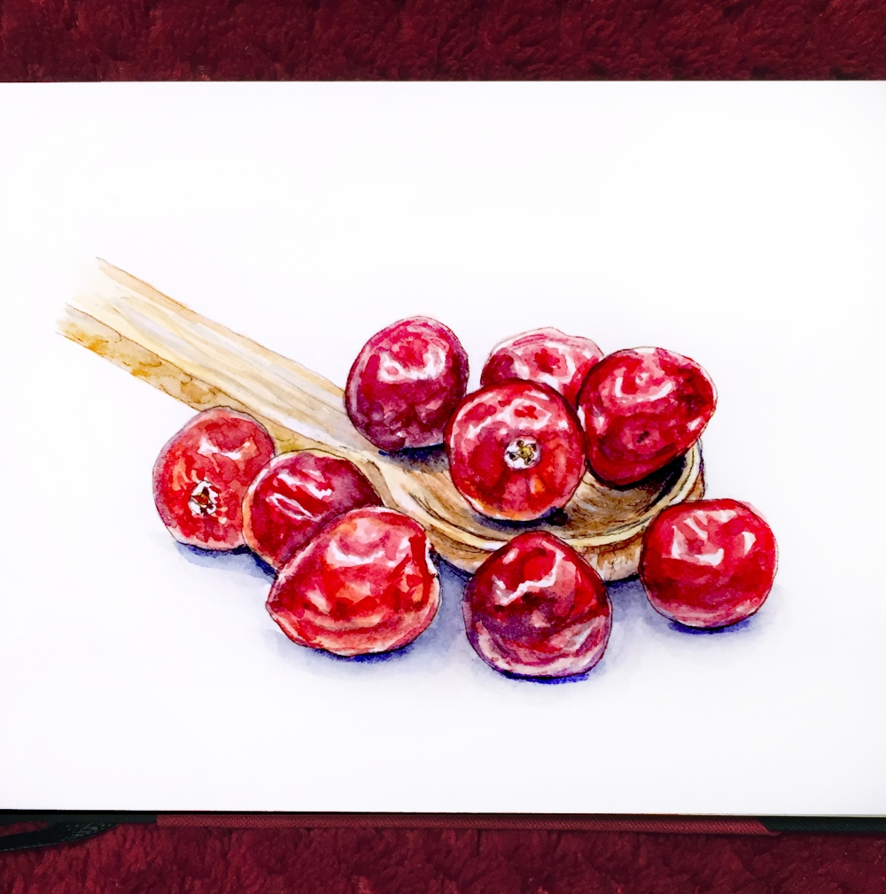 day-22-thanksgiving-cranberries