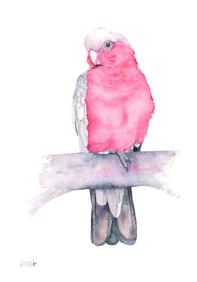 #WorldWatercolorGroup - Watercolor painting of pink bird by Louise De Masi - #doodlewash