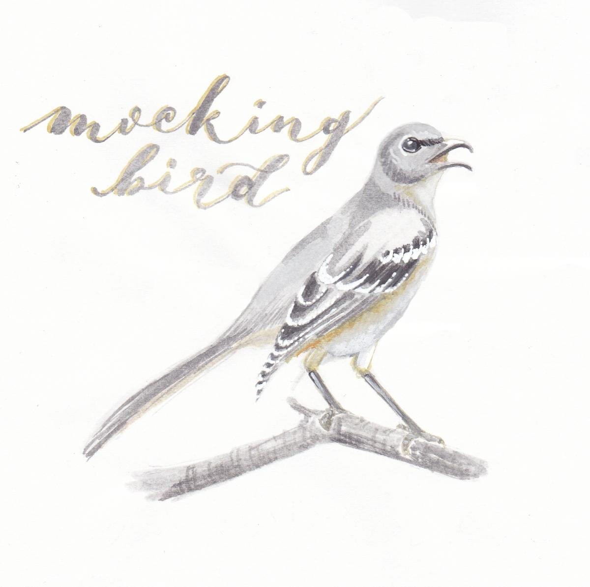 5-mocking-bird