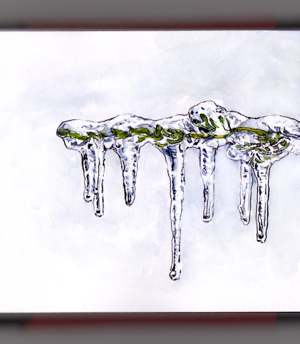 Day 29 - #WorldWatercolorGroup Winter Icicles Hanging on Branch #doodlewash