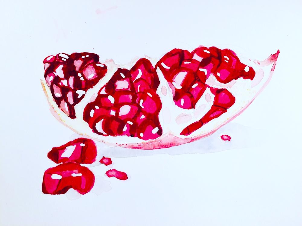 #WorldWatercolorGroup - Watercolor illustration of pomegranate by Jody Linn - #doolewash