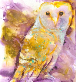 #WorldWatercolorGroup - Watercolor painting by Angela Casey of Barn Owl - #doodlewash