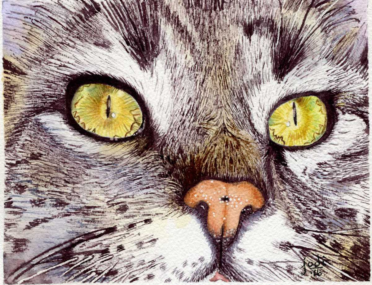 #WorldWatercolorGroup - Watercolor painting by Jodi Sones of cat - #doodlewash