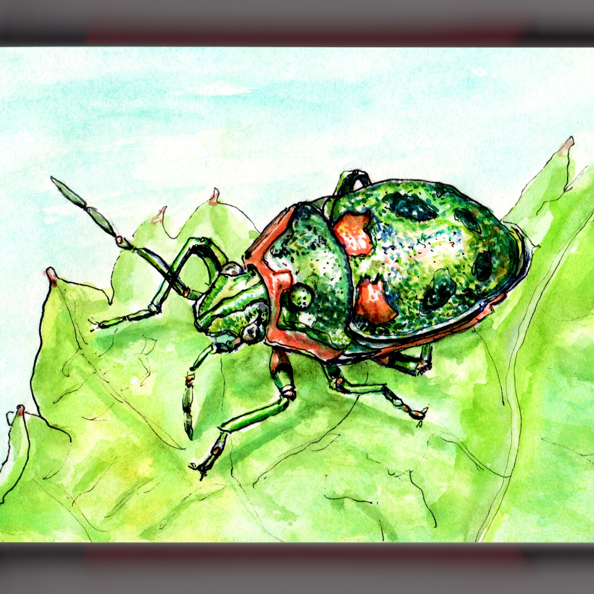 Day 20 - #WorldWatercolorGroup Shiny Bug On A Leaf - #doodlewash