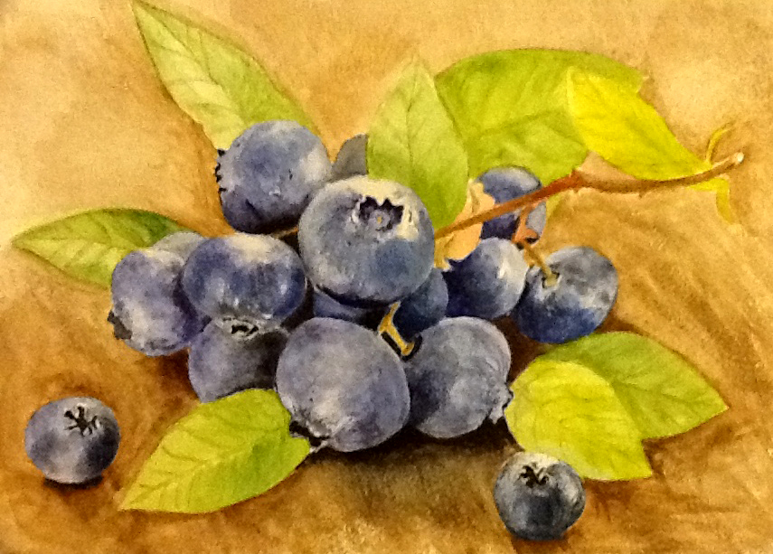#WorldWatercolorGroup - Watercolor painting by Mimi Dimova of blueberries - #doodlewash