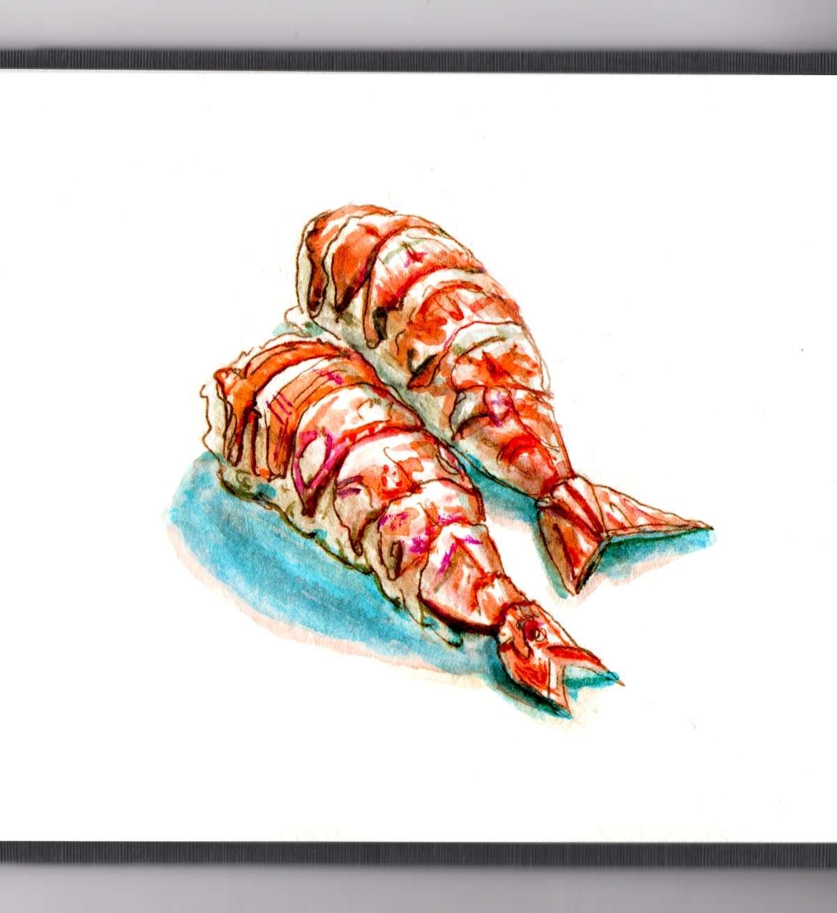 Day 25 - It Takes Two - Shrimp Sushi Watercolor - #doodlewash