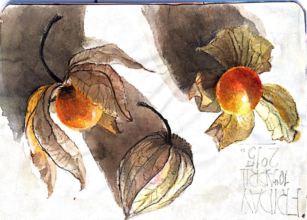 #WorldWatercolorGroup - Watercolor Sketch by Reham Moniem Ali in Egypt of fruit - #doodlewash #urbansketchers #usk